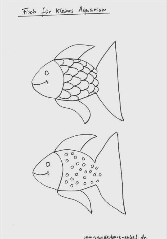 Vorlagen zum ausdrucken fisch 50+ Druckvorlage