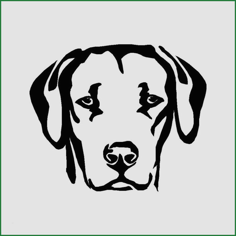 Tipss Und Vorlagen Puppy Coloring Page For