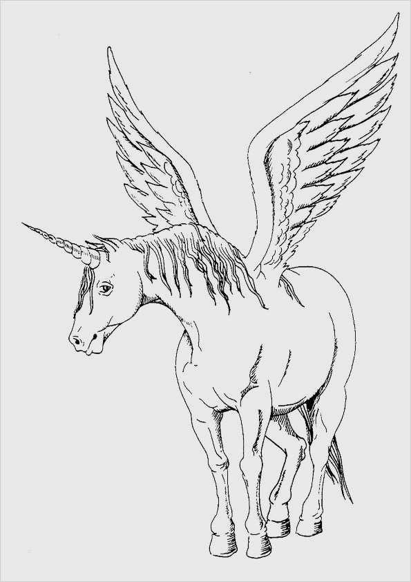 mal bilder vorlagen hübsch malvorlagen ausmalbilder pferde