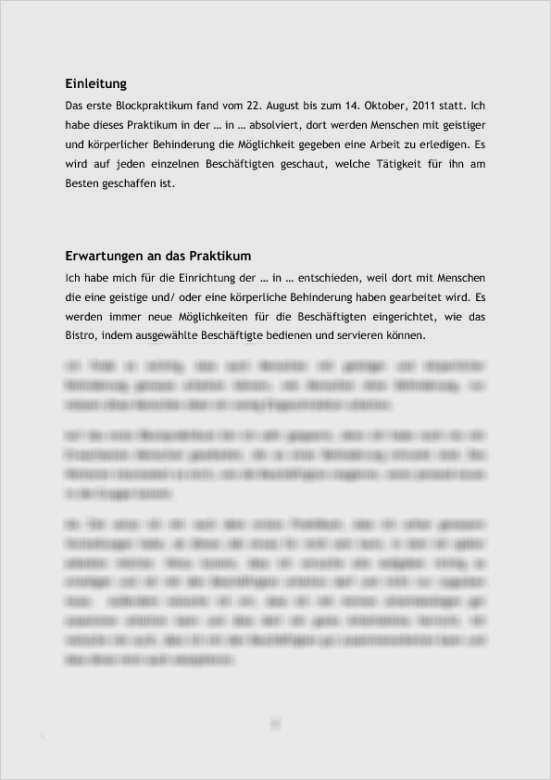 34 Erstaunlich Praktikumsbericht Vorlage